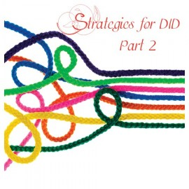 04. Strategies for DID Part 2
