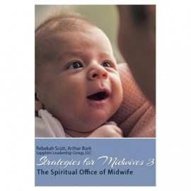 Strategies for Midwives 3 Download