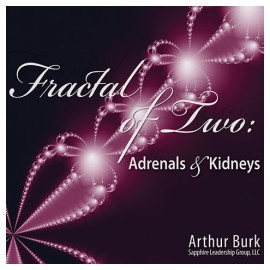Fractal of Two: Adrenals & Kidneys