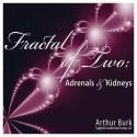 Fractal of Two: Adrenals & Kidneys
