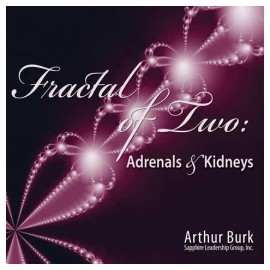 Fractal of Two: Adrenals & Kidneys Download